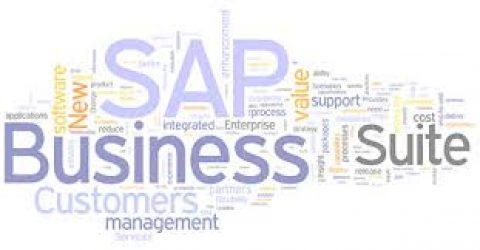 Les utilisateurs de SAP attachés à la Business Suite et frileux pour sa version cloud